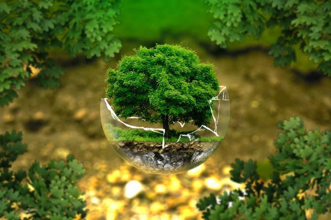 environmental-protection-326923_960_720.jpeg